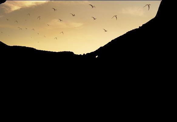 Дизайн сайта «Вятка-ДиноТур»